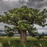 The Boab Tree: By Pat Lowe